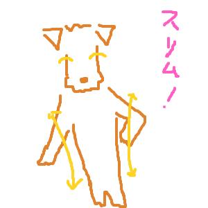 Cocolog_oekaki_2013_09_13_19_55