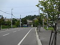 Img_5235